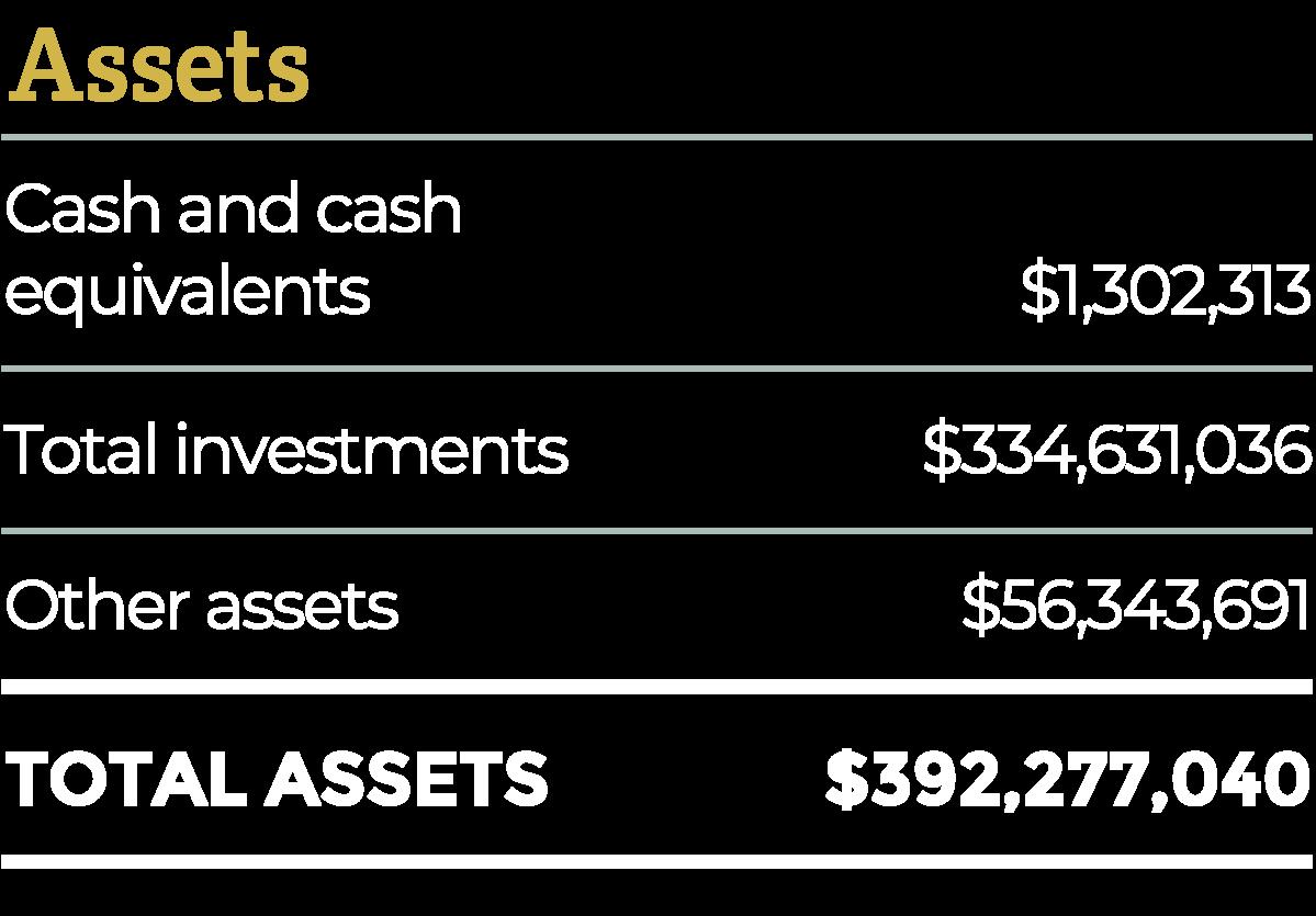 2018 Assets